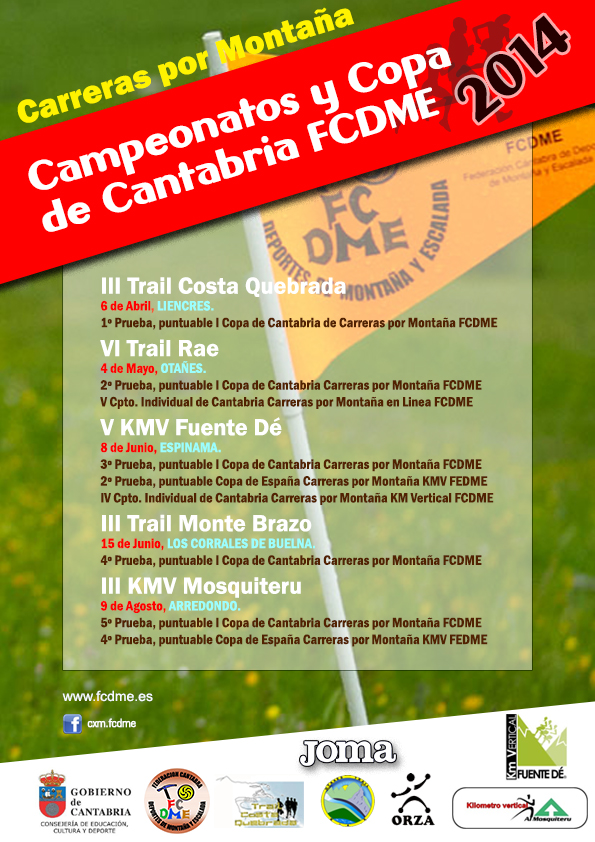Cartel Copa cantabria 2014